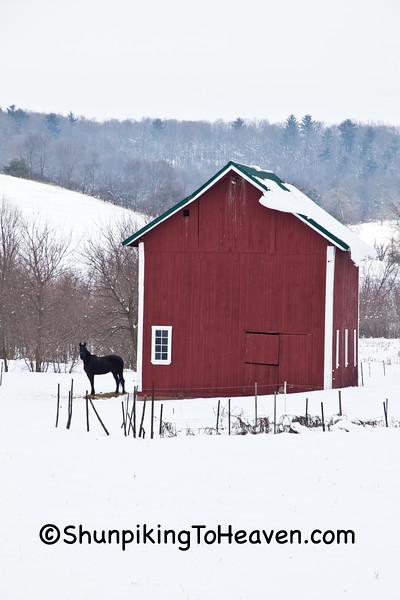Winter Farm Scene, Vernon County, Wisconsin
