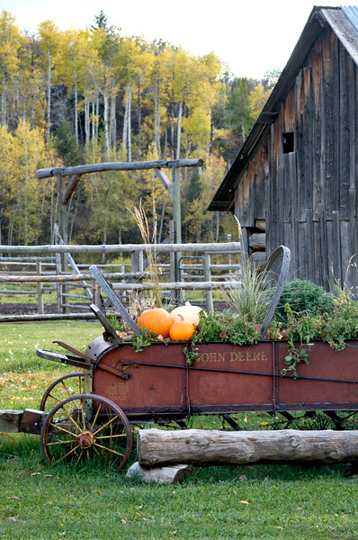 farm wagon with pumpkin