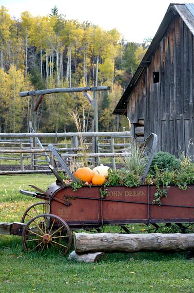 farm wagon with pumpkin
