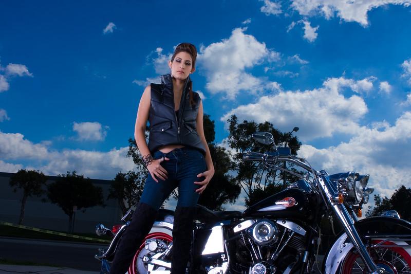 Harley_-1006