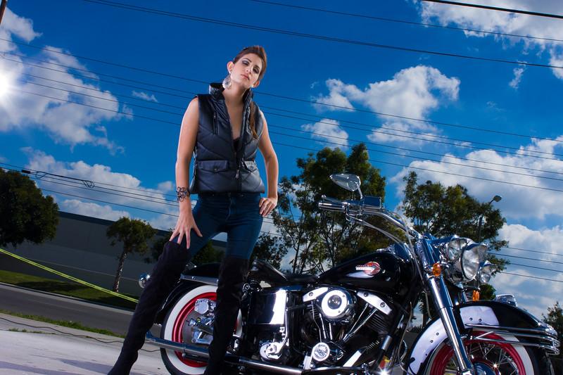 Harley_-1008