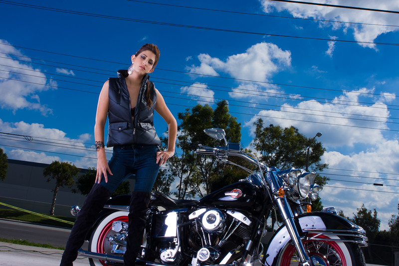 Harley_-1007