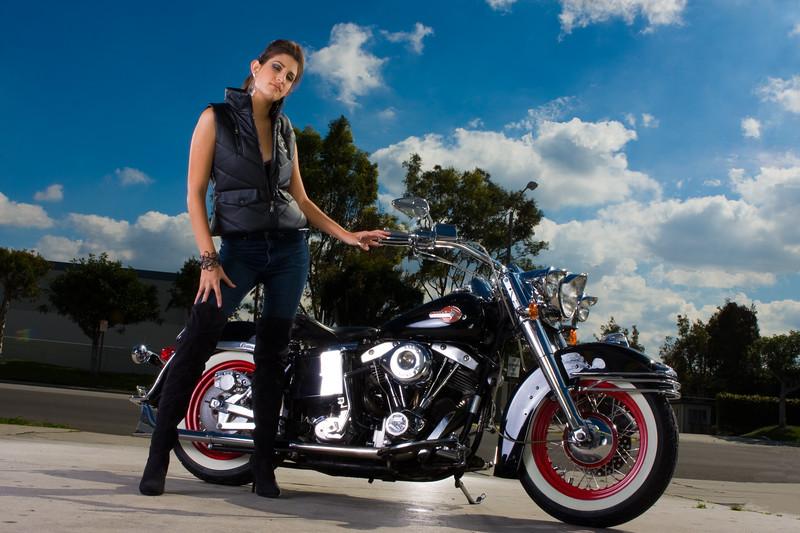 Harley_-1013