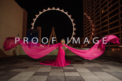 Silver Sparrow Photography_Las Vegas Photographer 008