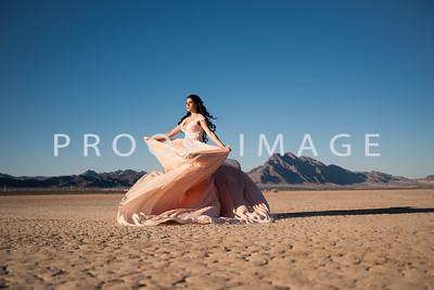 Silver Sparrow Photography_Las Vegas Photographer 023