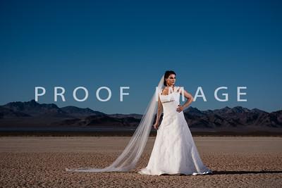 Silver Sparrow Photography_Las Vegas Photographer 016