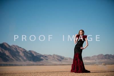 Silver Sparrow Photography_Las Vegas Photographer 021