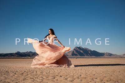 Silver Sparrow Photography_Las Vegas Photographer 024