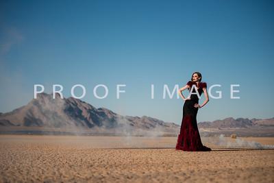 Silver Sparrow Photography_Las Vegas Photographer 019