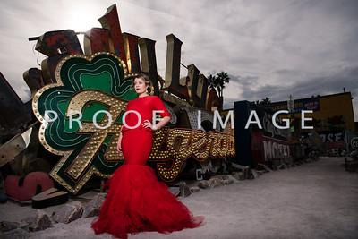 Silver Sparrow Photography_Las Vegas Photographer 035