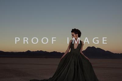 Silver Sparrow Photography_Las Vegas Photographer 030