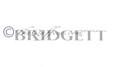 BKFW_Spg2012_Bridgett Artise_000