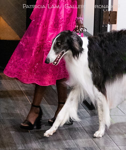 Wolf House model dress pink 6670