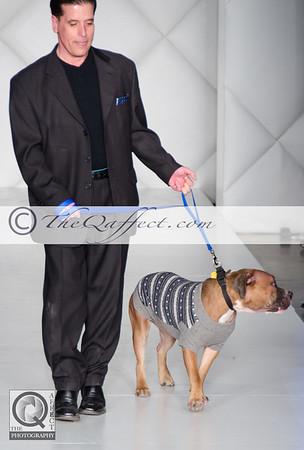 FWB_FW2014_My Fabulous Puppy-7345