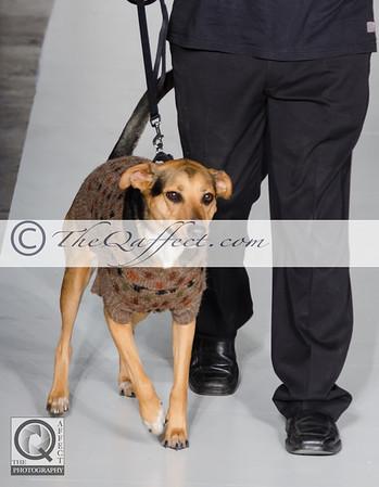 FWB_FW2014_My Fabulous Puppy-7310