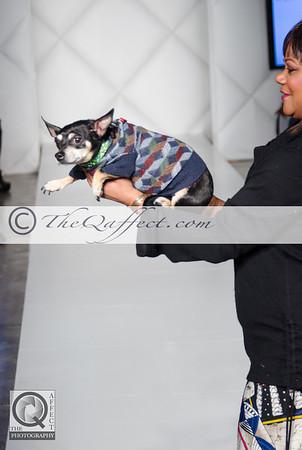 FWB_FW2014_My Fabulous Puppy-7336