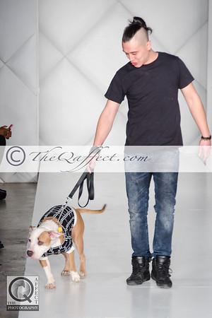FWB_FW2014_My Fabulous Puppy-7384