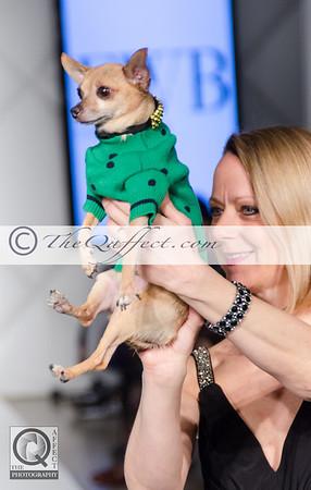 FWB_FW2014_My Fabulous Puppy-7369