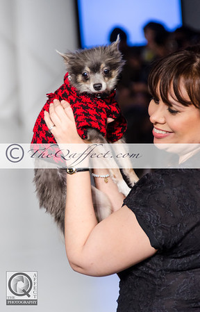 FWB_FW2014_My Fabulous Puppy-7376