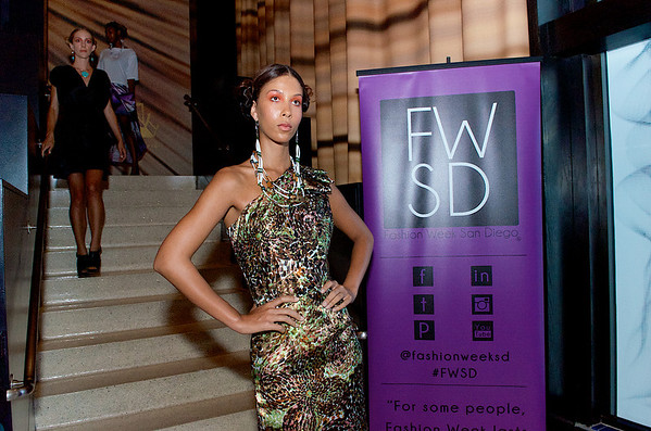 FWSD14: Flaunt Fashion Series #3, BJASHI (2014)