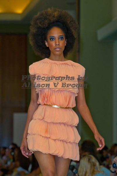 Kiswanna-(Donita Jackson)0002