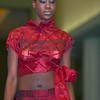 Kiswanna-(Donita Jackson)0017