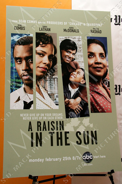 """NEW YORK - FEBRUARY 04:  Atmosphere at the Screening Of """"A Raisin In The Sun"""" hosted by Timestalks at the Times Center on February 4, 2008 in New York City.  (Photo by Steve Mack/S.D. Mack Pictures)"""
