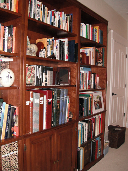 My bookcase wall... I love books! One entire bookcase holds books about Africa. The brown wicker box by the door is where my sister puts my mail while I'm traveling.