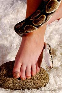 snakeskin pedicure, snake skin, Christine Holding Photography, Terri Silacci