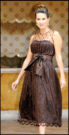 SARA--Brown Silk Taffeta Dress with Hand-beaded Tulle 901