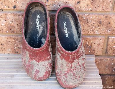 Gardeners Shoes