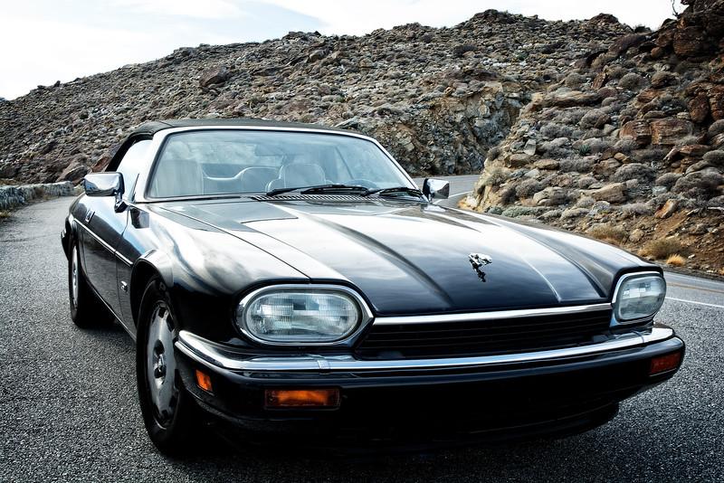 Jaguar (Borego Springs,CA)