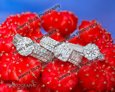 3 Diamond Halo Ring Group on Red Cactus Lifestyle