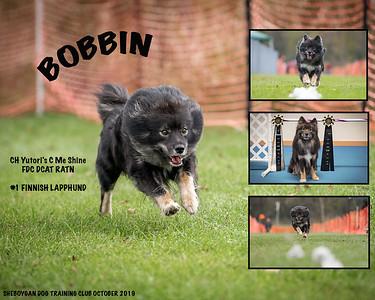 bobbin5