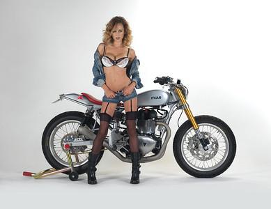 Richard Pollock / Mule Motorcycles Triumph Custom