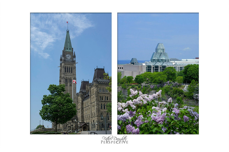 Father Daughter Perspective - Limited Edition Diptych 100% of proceeds from this print go to CHEO and OCTC.