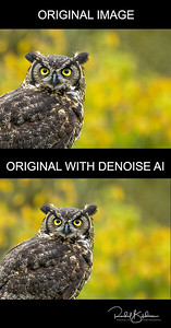 before and after denoise AI