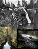 Steve provided me with some historical photographs of what the place looked like in the 1920s, when a small hydroelectric dam was located at the Jim Creek, where we were able to swim with the salmon..