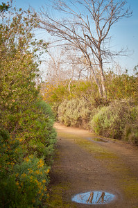 San Joaquin Wildlife Sanctuary--Irvine, California