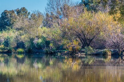 San Joaquin Wildlife Sanctuary-8140