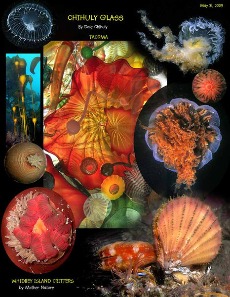 While walking through the Museum of Glass in Tacoma, I was fascinated by the colors and shapes created by the famous local artist Dale Chihuly and some of the images from the underwater world of Whidbey Island came to mind. May 31, 2009