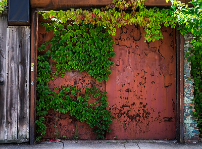 Rusted Metal Doors Redhook