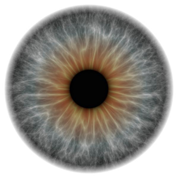 eye grey_11575.tif