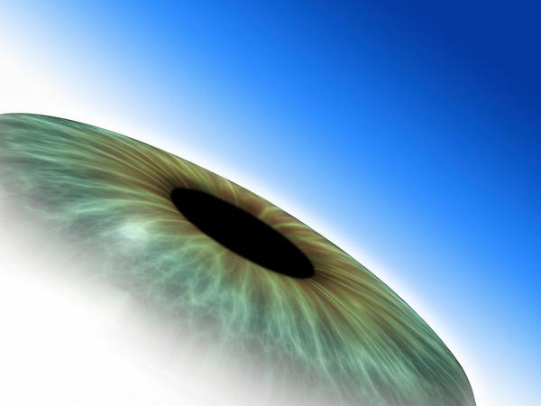 eye iris_10902.tif