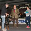 Fabio e Thor - Esposizione internazionale canina Modena gennaio 2016 - (1)