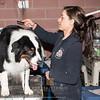 Esposizione internazionale canina Modena febbraio 2015 #43