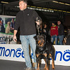 Fabio e Thor - Esposizione internazionale canina Modena gennaio 2016 - (3)
