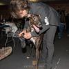 Esposizione internazionale canina Modena febbraio 2015 #32