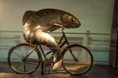 """Cycling Fish"", Guinness Storehouse, Dublin"