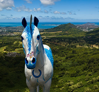 Painted horse on the Nu'uanu Pali Overlook trail  The wooden horses can be found in front of Sweet Home Waimanalo Restaurant & Gallery. The artist, is Patrick Ching. Patrick repaints them frequently with various whimsical designs